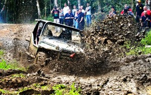 uk_rhinocharge